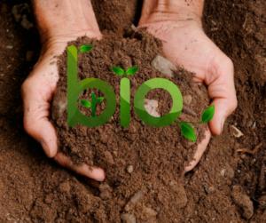 UE, NUOVA NORMATIVA SUL BIOLOGICO: CONSUMATORI PIU' TUTELATI