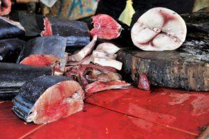 Revoca di richiamo per rischio presenza di allergeni Nordic Seafood A/S – Melega & Prini srl – Fette di tonno pinne gialle – congelato